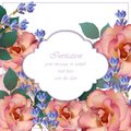 Wedding Invitation Card vector. Roses and lavender flowers. Primrose pink colors Royalty Free Stock Photo