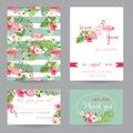 Wedding Invitation or Congratulation Card Set Royalty Free Stock Photo