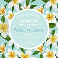 Wedding Invitation Template with Plumeria Flowers. Tropical Floral Save the Date Card. Exotic Flower Romantic Design Royalty Free Stock Photo