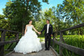 Wedding photo of newlyweds Royalty Free Stock Photo