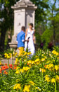 Wedding photo session at stadtpark downtown of vienna austria Stock Images