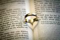 Wedding ring on a bible Royalty Free Stock Photo