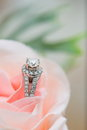Wedding ring closeup of diamon Royalty Free Stock Photos