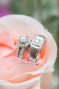 Wedding ring diamon on a pink rose Royalty Free Stock Photo