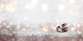 Wedding rings on an abstract silver glittering bokeh background Royalty Free Stock Photo