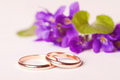 Wedding rings against violets flowers Stock Photos