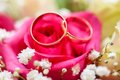 Wedding rings on bridal bouquet golden close up Stock Photography