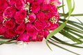 Wedding rings and bridal bouquet isolated over whi of pink roses white Stock Photo
