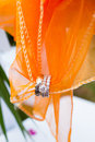 Wedding rings and fabric orange holds these on a special day for the bride groom Stock Images