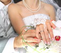 Wedding rings on hands of bride sheniha Royalty Free Stock Photography