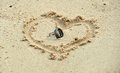 Wedding rings laying in sand in heart shape Royalty Free Stock Photo