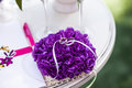 Wedding rings on purple support Royalty Free Stock Photo