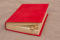 Wedding rings in the Red Book Royalty Free Stock Photo