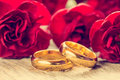Wedding rings with red carnations Royalty Free Stock Photo