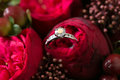Wedding rings and roses bouquet red Royalty Free Stock Photos