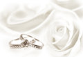 Wedding rings and white rose Royalty Free Stock Photo