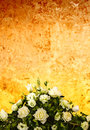 Wedding rose background flowers and old wall Stock Image