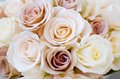 Wedding roses bridal bouquet of beautiful for a Stock Images