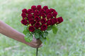 Wedding saturate red rose bouquet of bride on grass Stock Images