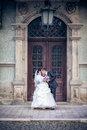 Wedding shot happy bride groom Royalty Free Stock Photography
