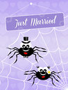 Wedding of spiders illustration Royalty Free Stock Images