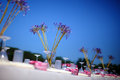Wedding table set dining outdoor wedding Royalty Free Stock Photography