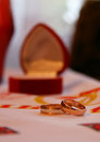 Wedding two rings near nice red box shallow depth of field Stock Photography