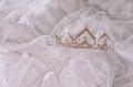 Wedding vintage crown of bride and veil. wedding concept