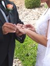 Wedding Vows Stock Image