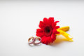 Weddings rings with red flower Royalty Free Stock Photography