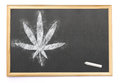 A weed leaf drawn on a blackboard with chalk.series Royalty Free Stock Photo