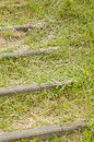 Weed problem growth of on stairs creating problems Royalty Free Stock Photos