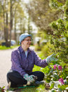Weeding woman in the garden and she use protective gloves Stock Photos