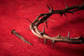 Week of passion jesus christ crown thorns and a nail on red background Royalty Free Stock Photography
