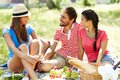 Weekend picnic happy young friends having in the country Royalty Free Stock Photography