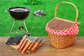 Weekend Summer Outdoor  BBQ Party Ot Picnic Scene Royalty Free Stock Photo
