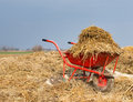 Weelbarrow with animal manure wheelbarrow natural cattle on the farmland Stock Image