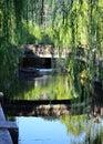 Weeping willow trees and bridge, Kinosaki Japan. Royalty Free Stock Photo