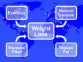 Weight Loss Diagram Showing Fiber Exercise Fat And Calories Royalty Free Stock Photo