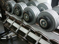 Weightlifting Dumbbells on a rack Royalty Free Stock Photo