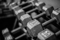 Weights on rack Royalty Free Stock Photo