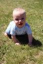 Weinig Cutie in Gras Royalty-vrije Stock Afbeeldingen