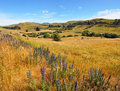 Weka Pass Valley, North Canterbury New Zealand Stock Photo