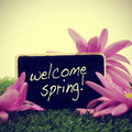 Welcome spring some flowers on the grass and a blackboard with the sentence written in it with a retro effect Royalty Free Stock Photo