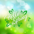 Welcoming the springtime. Hello Spring. Hand lettering text and green leaves, vector illustration.