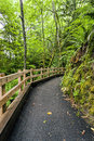 Well maintained path in forest the leading to madison falls the olympic peninsula of washington Stock Images