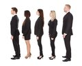 Welldressed businesspeople standing in a line full length side view of over white background Royalty Free Stock Images