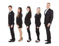 Welldressed businesspeople standing in a line full length side view of over white background Royalty Free Stock Photos