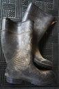 Wellington boots Royalty Free Stock Photo