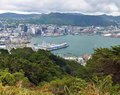 Wellington city harbour vertical panorama new zealand november waterfront on a spring day in from mount victoria Royalty Free Stock Image